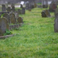 Le cimetière musulman de Bobigny : une exception en France