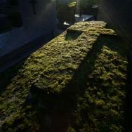 Père Lachaise : les vrais héros du plus beau cimetière de Paris