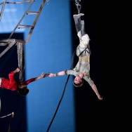 Pipototal au Tour Circus de la Défense
