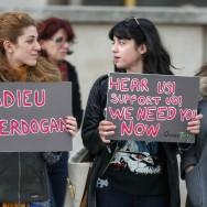 Les Turcs de France s'associent aux manifestations d'Istambul