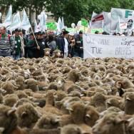 Les agriculteurs en colère marchent sur Paris