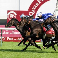 Longchamps : Qatar Prix de l'Arc de Triomphe 2015
