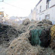 Les agriculteurs d'Eure-et-Loir manifestent à Nogent-le-Rotrou