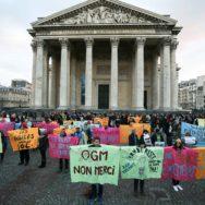 """""""Pas un euro de plus pour les énergies fossiles"""" martèlent les ONG devant le Panthéon."""