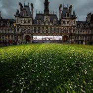 11-Novembre : 94.415 fleurs déposées sur le parvis de la mairie de Paris.