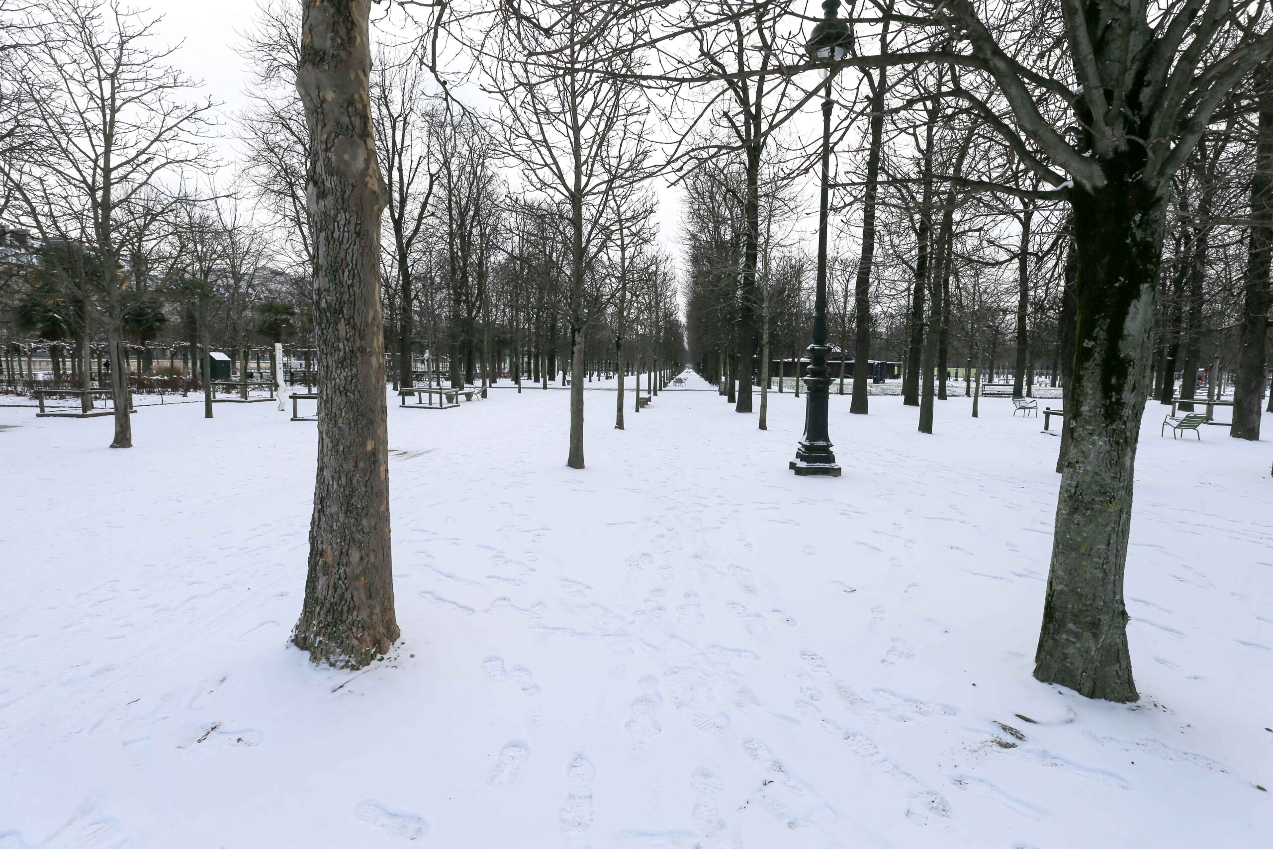 The Tuileries garden, in Paris, is covered in snow on February 10, 2021, following an overnight snowfall. In parts of the Paris region authorities cancelled school buses and urged parents to keep children at home. The city of Paris has opened gymnasiums to